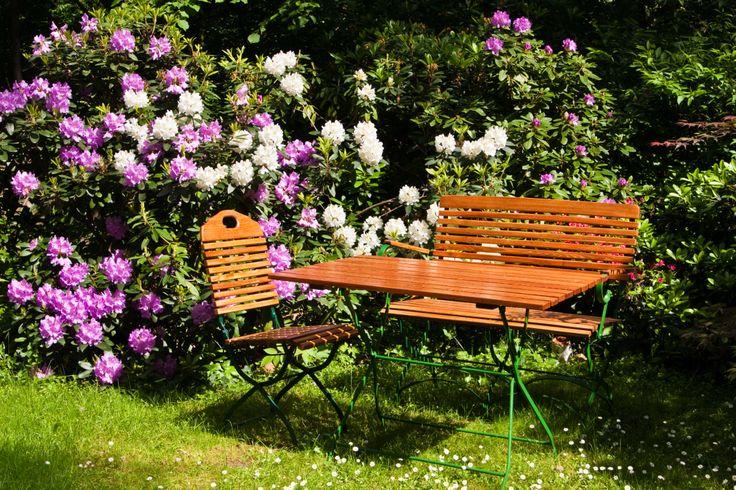 Jardines peque os con rosas inspiraci n de dise o de - Jardines interiores pequenos ...