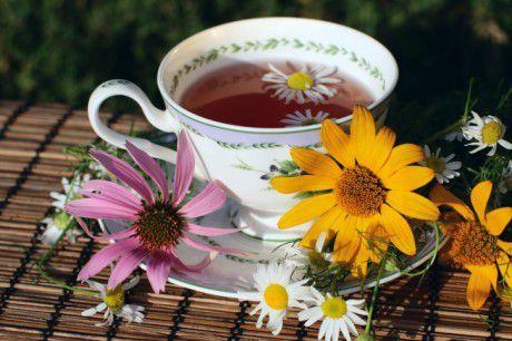 ekinezya çayı Şifalı Çaylar ve Faydaları  arpa çayı Arpa Çayı Faydaları Birçok iklime uyum sağlayan, birçok bölgede kolaylıkla yetişebilen bir bitki olan arpa, son zamanlarda dünya çapında tanınmasıyla buğdaya yakın bir bitkidir. Hemen hemen herkes bu şifalı bitkinin bira yapımında kullanıldığını bilir. Tahılların içinde çokça tanınan bu şifalı bitkinin aslında vücut içinde birçok faydası vardır. Ayrıca birçok alanda da tüketimi yapılmaktadır. Birçok ülke bu şifalı bitkinin  Yazar: Elif Genç