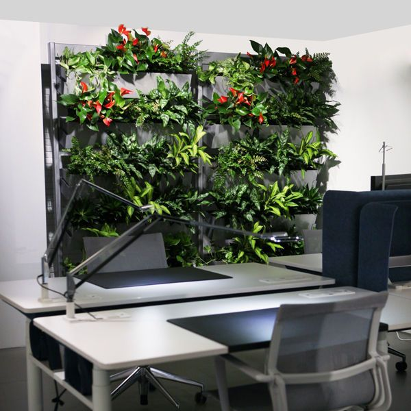 Wallscreen - Tropisk Design Mobile wall, Green wall, plant, plants, living wall