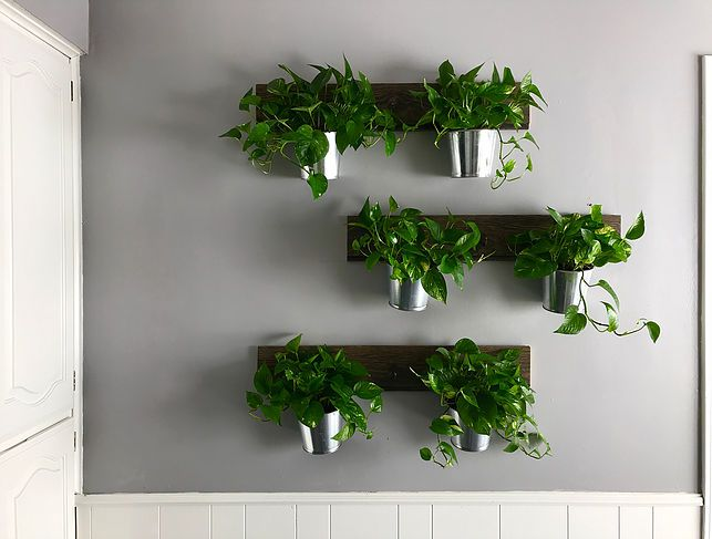 Kitchen Makeover Fairwind House The Kiwi Home Home Garden Blog Wall Hanging Plante Hanging Planters Indoor Hanging Wall Planters Indoor Wall Planter