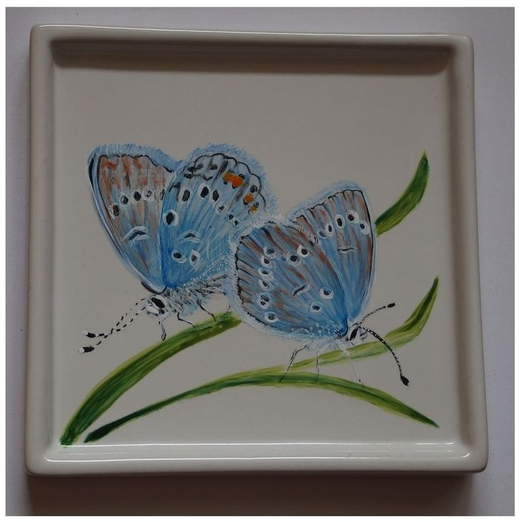 The common blue by Agnieszka Sokołowska. Hand painted on porcelain. All my porcelains are painted with Talens Decorfin Porcelain and baked in high temperature, so they are pretty durable. #Xantosia #handpainted #reczniemalowane #art #porcelart #porcelainpainter #ceramic #butterfly #motyl #modraszek #insect #nature #blue #niebieski #tableware #phengaris #Голубянка