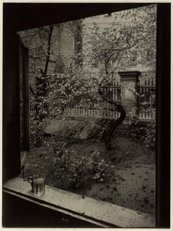 memoryepsilon:The Window of My Studio - Spring in My Garden, 1940-1954Josef Sudek Czech, 1896 - 1976Gelatin silver print, 22.9 x 17 cm,Anonymous Gift, 2000Reproduction restricted. AGO/Courtesy of Anna Fàrovà Estate © 2012Josef Sudek: The Legacy of a Deeper Vision runs October 3, 2012, to April 7, 2013, at the AGO.artgalleryofontario