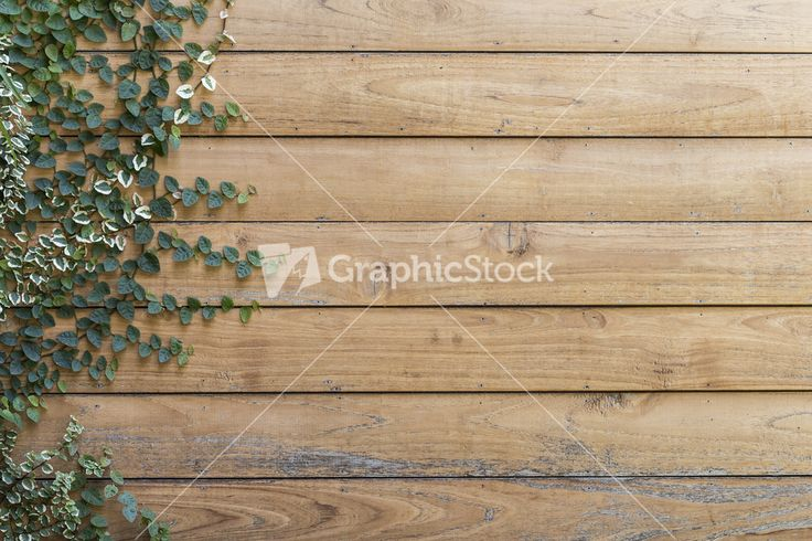 Tree on Wood planks texture background wallpaper Stock Image