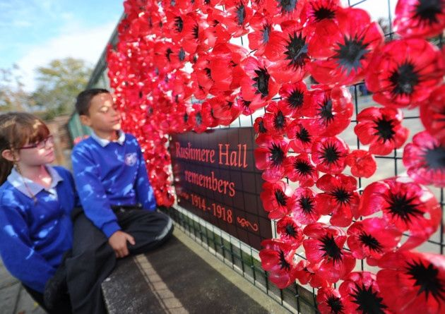 Pupils and staff from Rushmere hall primary school have been turning soft drink bottles into poppies in memory of the First World War. Eliza and Morgan
