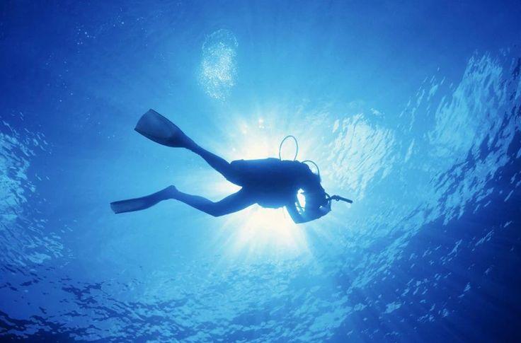 Foto: «E' delizioso restare immersi in questa specie di luce liquida che fa di noi degli esseri diversi e sospesi...» (Paul Claudel) #citazione #subacquea #quotes #quotesoftheday #citazionesubacquea #mare #immersione