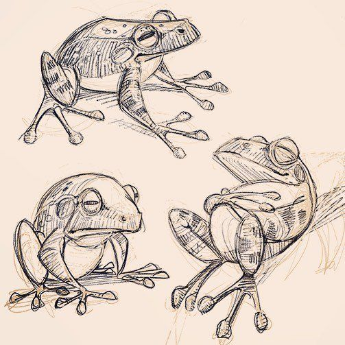 David Hohn (@david_hohn) | Twitter - Frog designs for a book I'm working on…