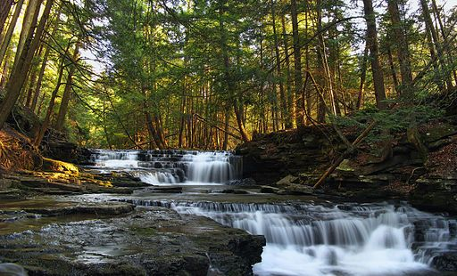 7 Unbelievable State Parks In Pennsylvania For Hiking