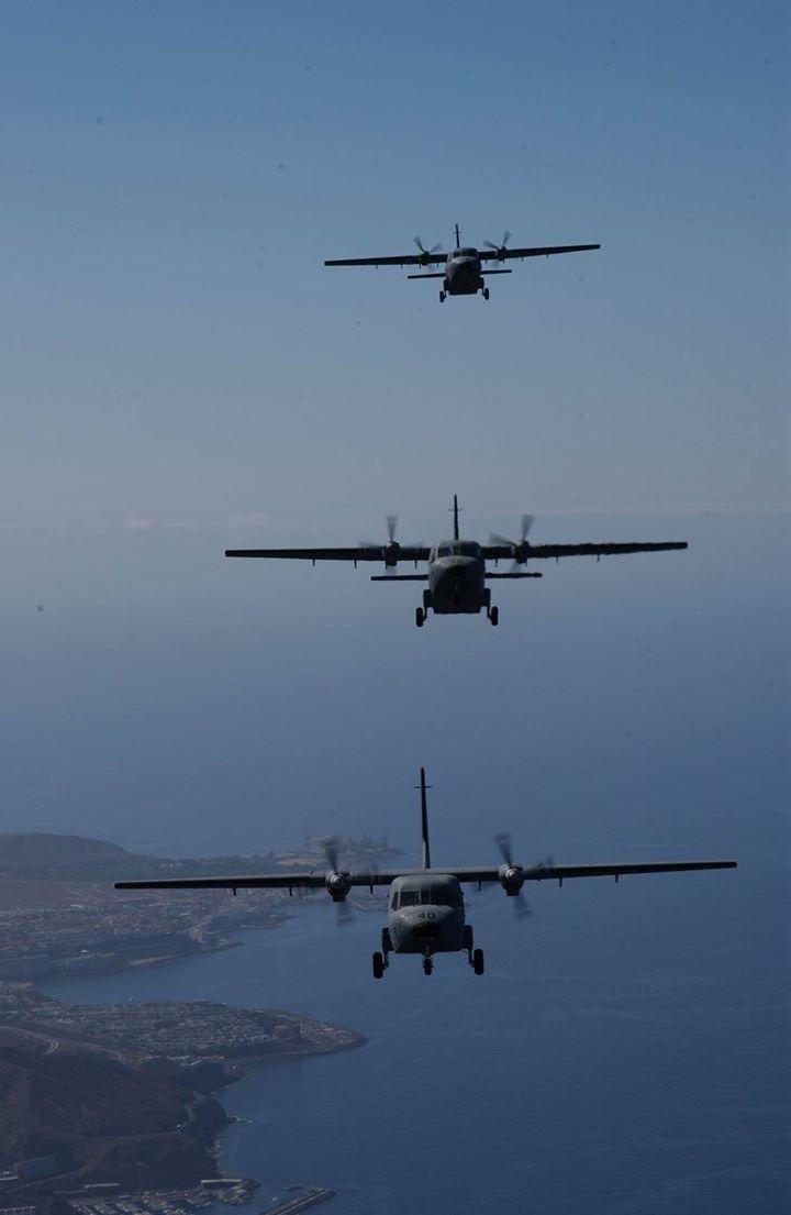 Formación en vuelo