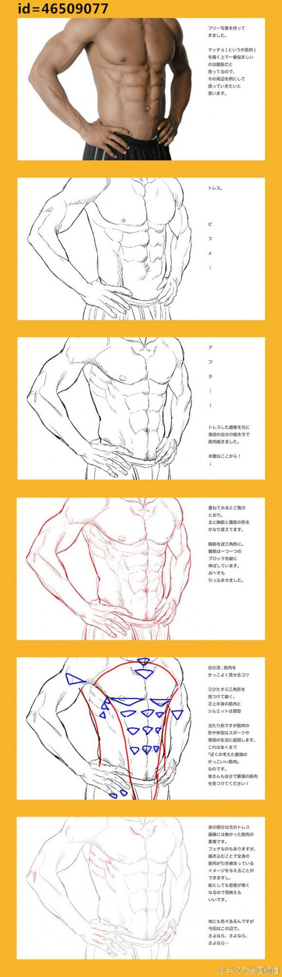 Abs reference animedrawing anime drawing male em 2020