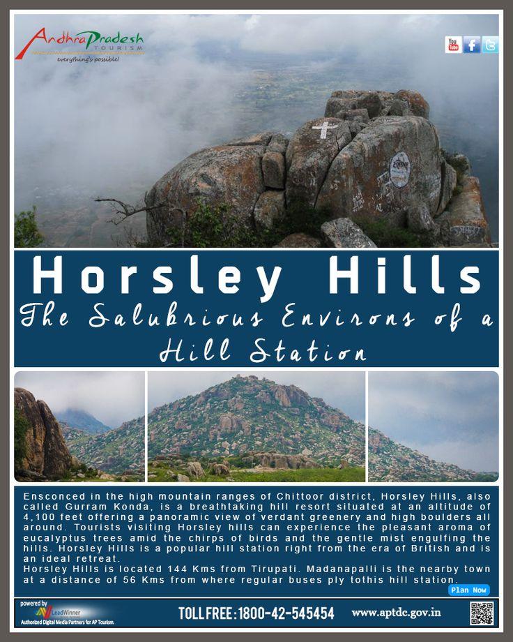 APTDC Haritha Hill Resort - Horsely Hills - Andhra Pradesh