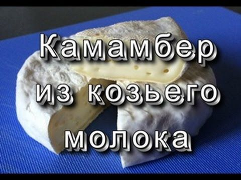 Плотный Камамбер (из козьего молока)