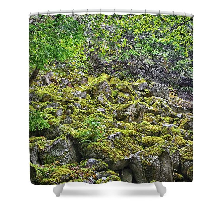 No Rolling Stones Here Shower Curtain by Leslie Montgomery.