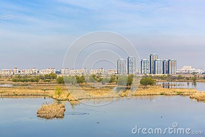 Daytime view of aquatic ecosystem on old Vacaresti Lake near south-eastern Bucharest suburbs with tall residential buildings.