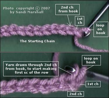 Beginning the First Row - Photo shows where first sc is made in starting chain Crochet TUTORIAL