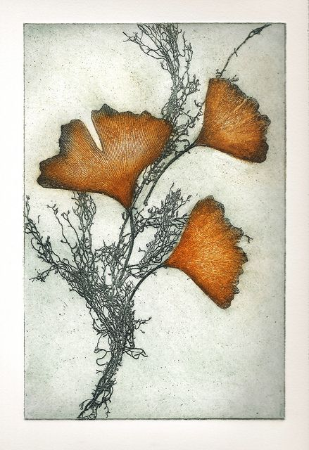 Soft ground etching - by SharonParoliniArt -http://www.etsy.com/listing/119521283/california-ginkgo-intaglio-etching?ref=shop_home_active