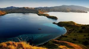 Book deal Komodo Adventure Tours Special deal Komodo Tours with natural beauty of Komodo Island adventure to your holiday destination reservation  #komodotours #komodoadventure #komodoadventuretours #indonesiaadventure http://www.komodoecotours.com/komodo/komodo-adventure-3d-2n
