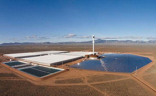 This Australian Farm Grows Tomatoes Using Only Sun And Seawater | Care2 Causes