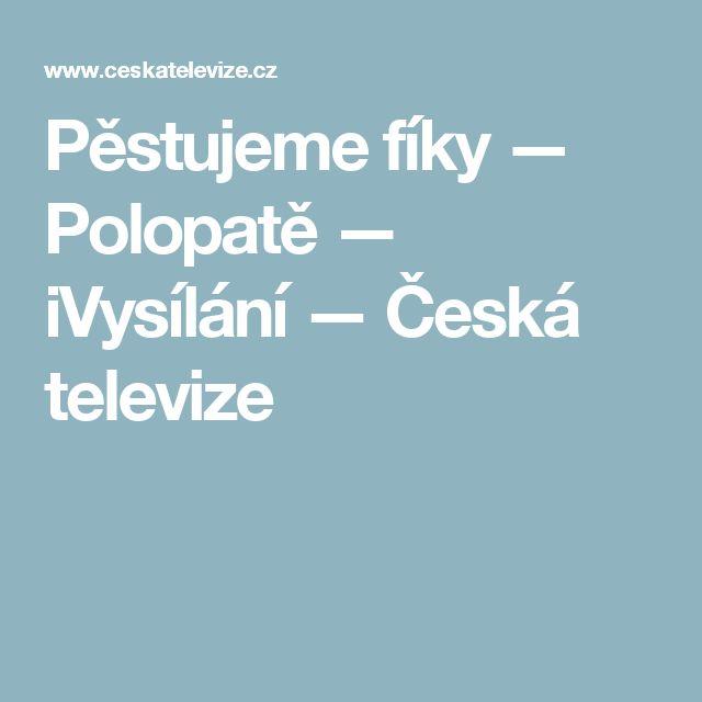 Pěstujeme fíky — Polopatě — iVysílání — Česká televize