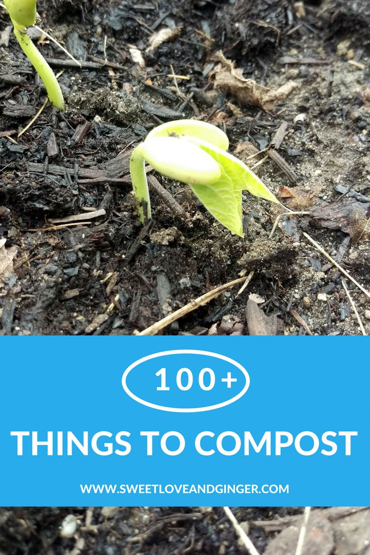 100+ Things to Compost