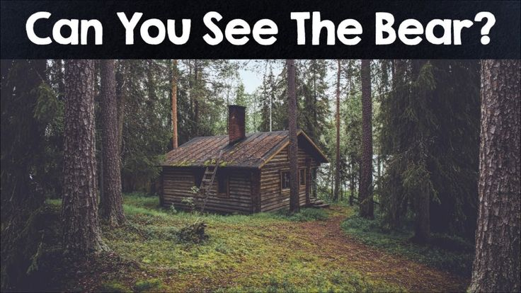 NOBODY CAN SEE ALL THE HIDDEN ANIMALS - OPTICAL ILLUSIONS - BRAIN TEASERS