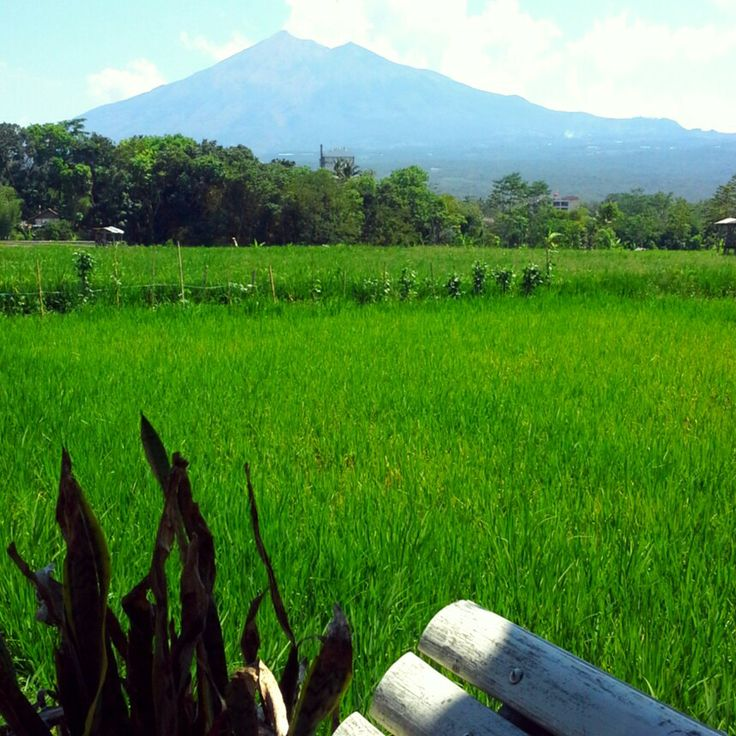 My lovely hometown - Salatiga Central Java Indonesia