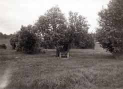 Kirkko ja kirkkotarha ennen vuosien 1930-31 arkeologisia kaivauksia. Kuva idästä. Kuva Nils Cleve/HKM.