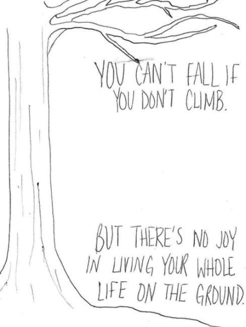 You can't fall if you don't climb, but there's no joy in living your whole life on the ground.