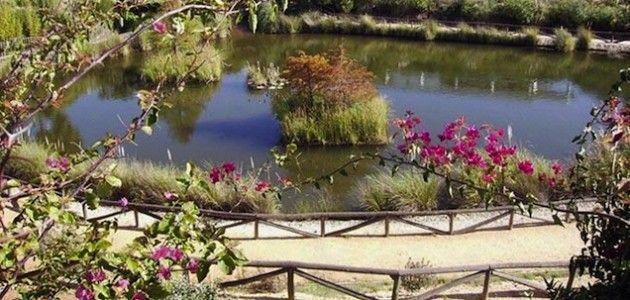Un Parque Botánico rico en flora de américa (Huelva)