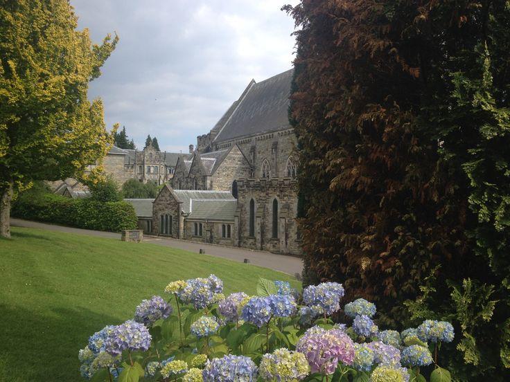 Ashdown Park Garden view