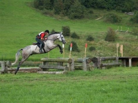 I would love to ride a cross country course again.