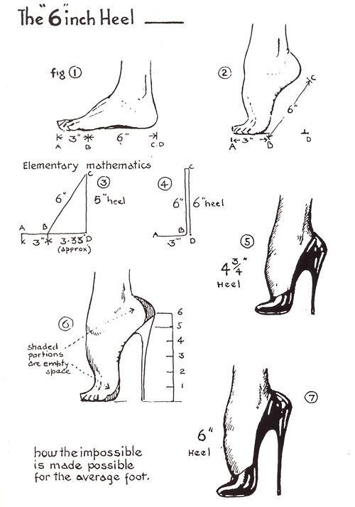 betty boop anatomy