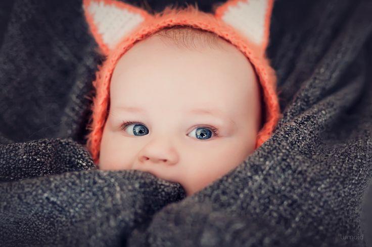*littlefox - Julian - so sweet  #photoshoot #inspiration #fox #littlefox #baby #familienfotografie #fuchs #lumoid #fotografin #ruhrgebiet