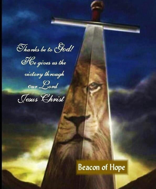 Sword In The Bible Quote: 73 Best Sword Of The Spirit Images On Pinterest