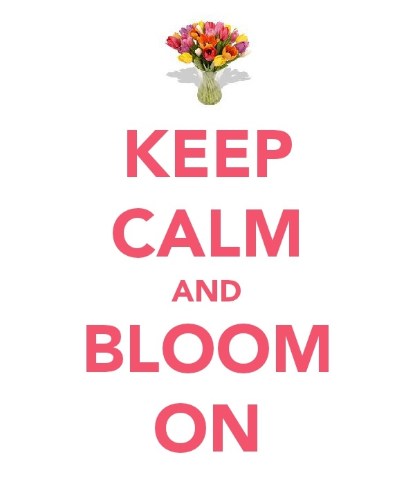 1000 Images About Keep Calm Stuff On Pinterest