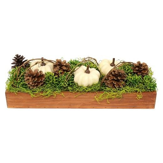 Long Succulent and Pumpkin Arrangement Multicolored - Threshold™ : Target ($19.99)