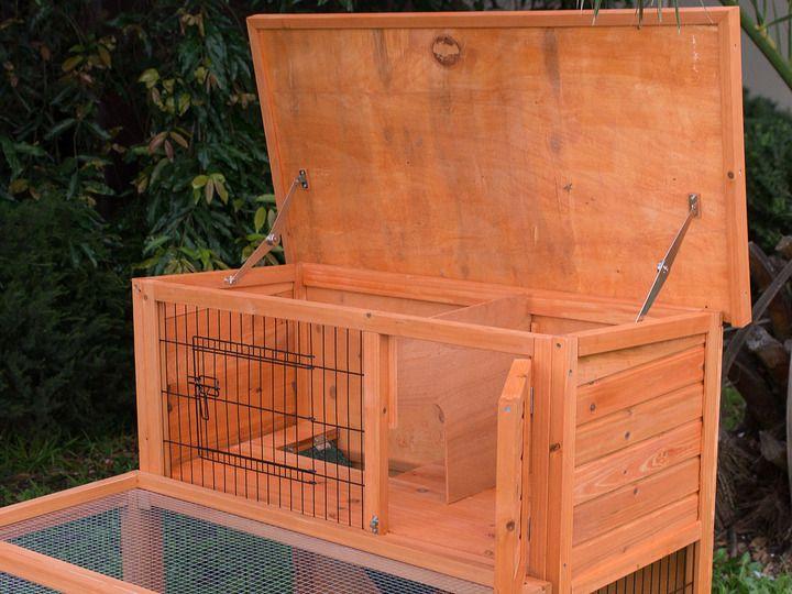 38 best images about rabbits on pinterest guinea pig for Super pet hutch