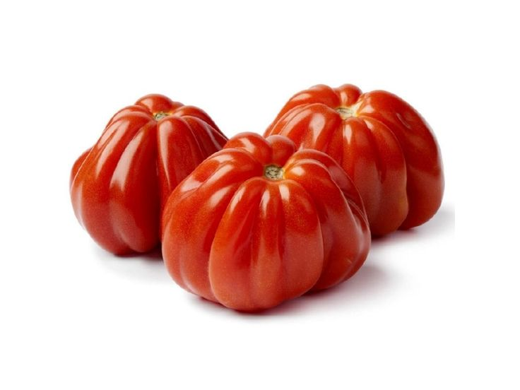 1,85 €Italian CUORE DI BUE Tomato Seeds Price for Package of 10 seeds. 85 days. This curious and striking tomato is guaranteed to turn heads as well as satisfy appetites. Its name is simply Italian for oxheart, although this selection(Riviera) is an exotic twist on the oxheart tomato type. These big tomatoes have a bottom-heavy shape reminiscent of