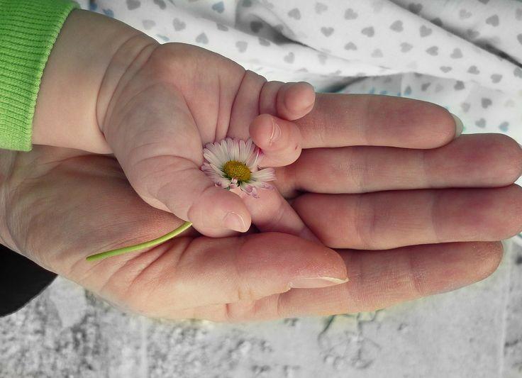 Es un sentimiento humano y natural querer tener a una #madre sensible y amorosa que ame todo de nosotros, pero ¿que efectos tiene el tener una madre opuesta a nuestros deseos?
