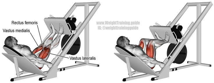 """Incline leg press. A compound exercise. To learn how to emphasize different muscles by adjusting the positioning of your feet, visit site and read the """"Comments and tips"""". Target muscles: Quadriceps. Synergists: Gluteus Maximus, Adductor Magnus, and Soleu https://www.musclesaurus.com/"""