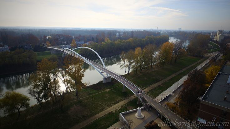 Szolnok Tiszavirág-híd