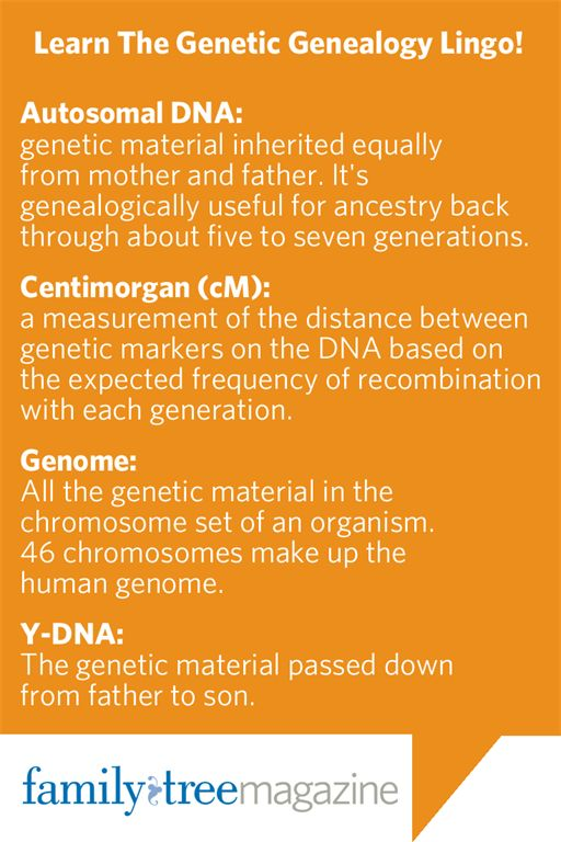 Discover the meaning and history behind your ... - Ancestry