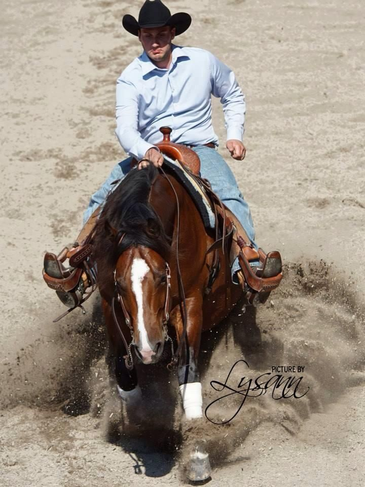todos os belos cavalos pdf free