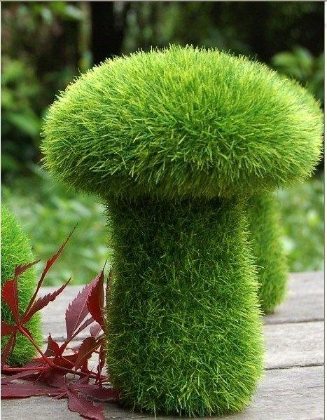 124 best Garden Brilliance & Ideas images on Pinterest