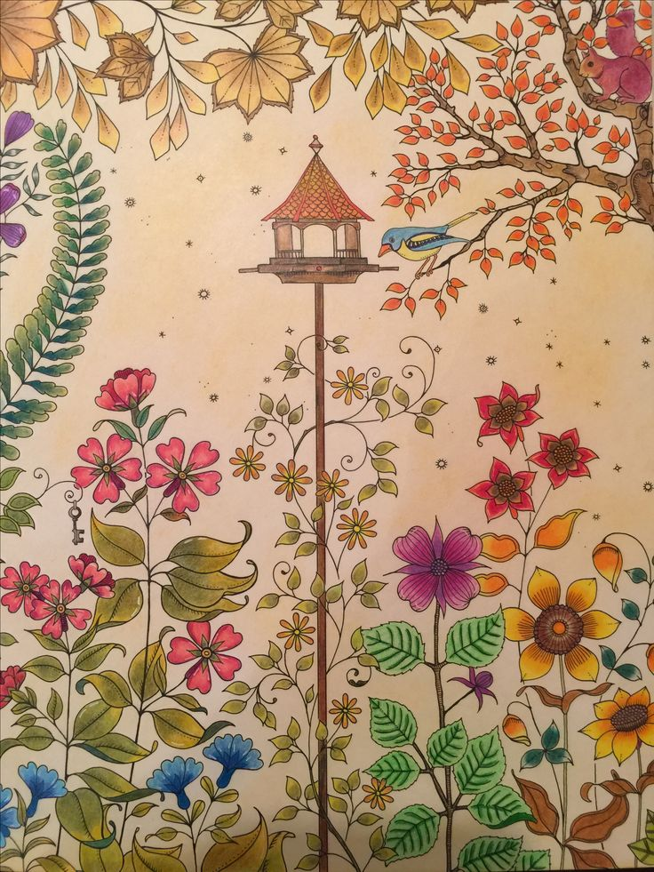 Artist Edition Jardim Secreto