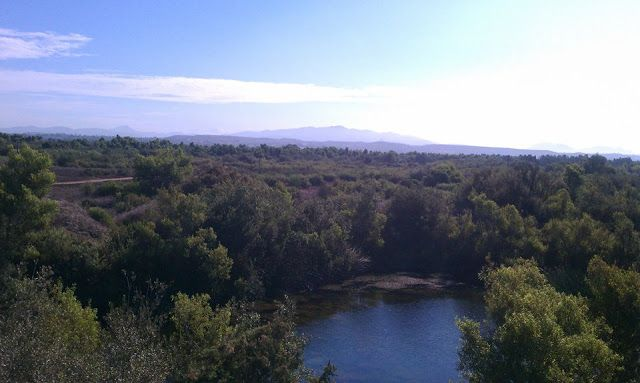 Let us Hike: Tijuana River Valley Regional Park with kids and dogs