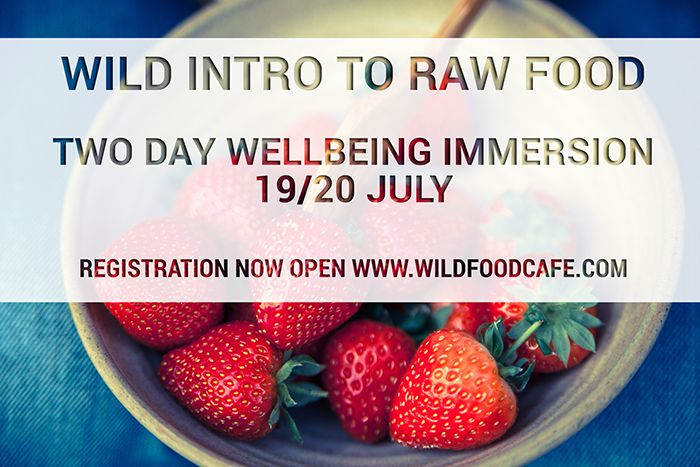 raw food cookery course london july
