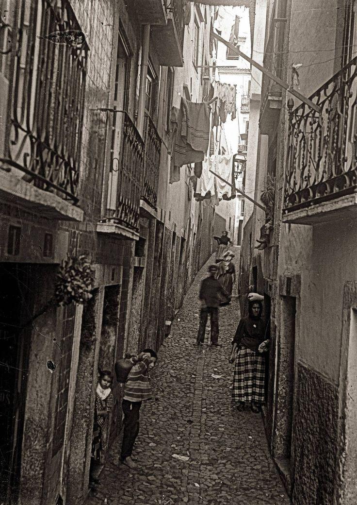 Gonçalo Mexia, que pela sua muita sabedoria foi chamado o mestra Gonçalo. Em memoria d'este sabio se deu o seu nome a uma rua de Lisboa, que ainda se chama Béco do Mexia.