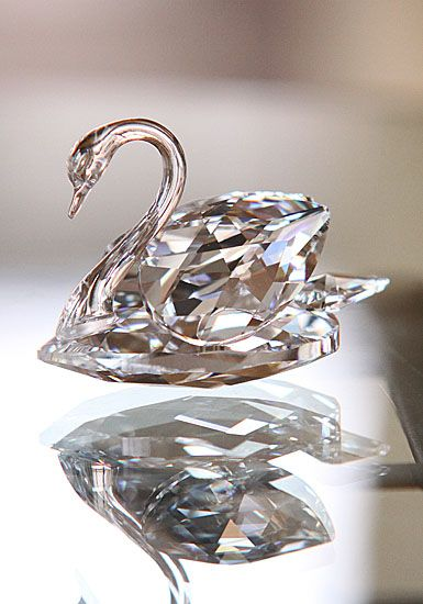 Swarovski Swan, Large, Feel so guilty was at my daughters house and broke her Swarovski Swan