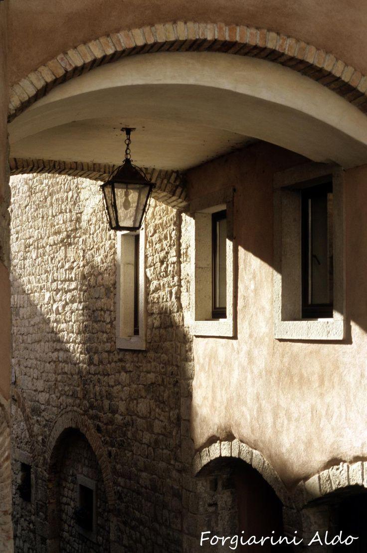 Forgiarini Aldo, Gemona Del Friuli