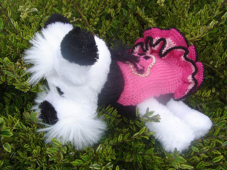 Pull skull, téte de mort, robe pour petite chienne série BIKEUR ROCK : Animaux par jodestyl